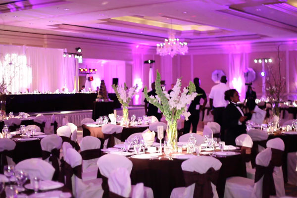 Bay Area Cheap Uplighting Rentals Back Drop Wedding